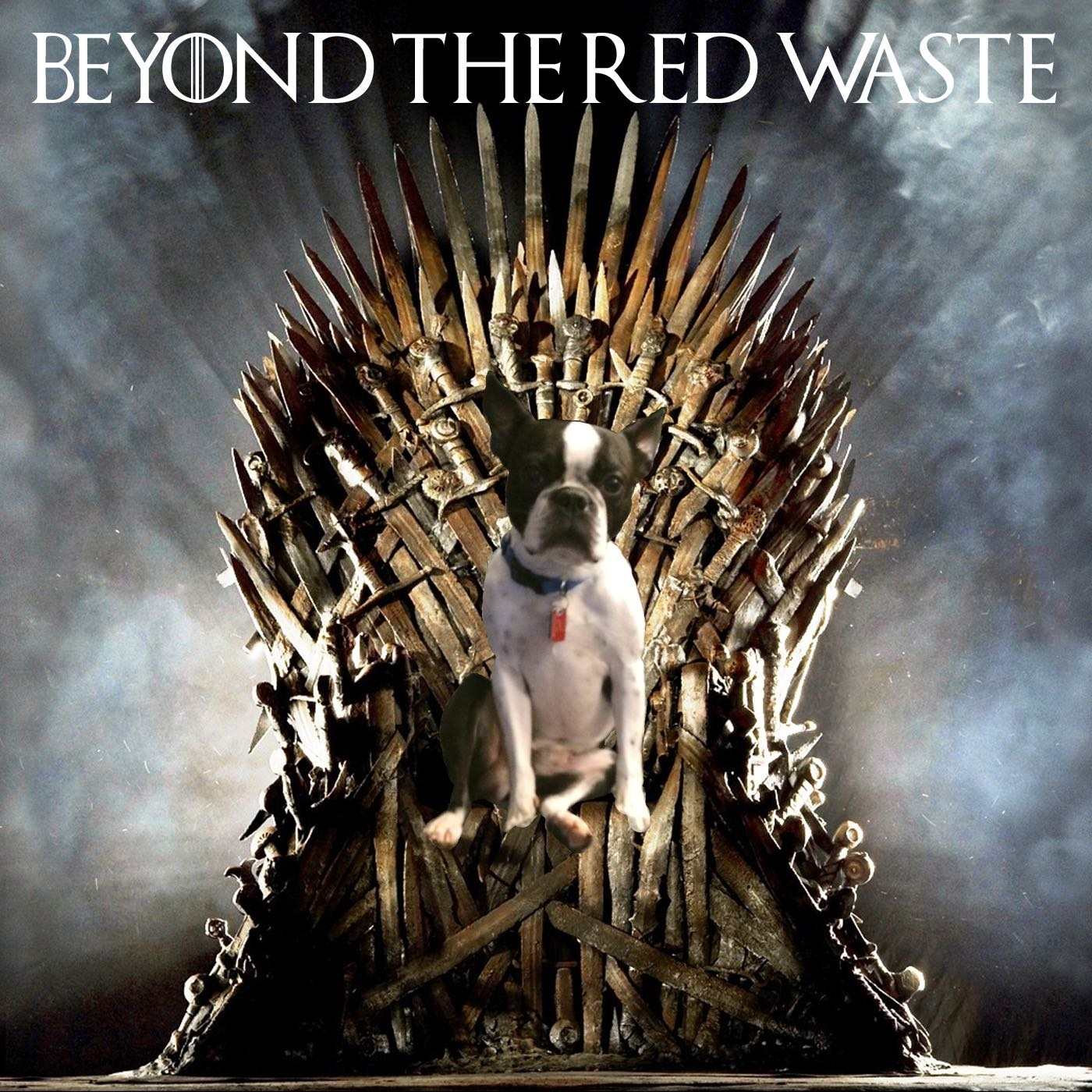Beyond the Red  Waste